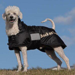 Back On Track koera talvejope